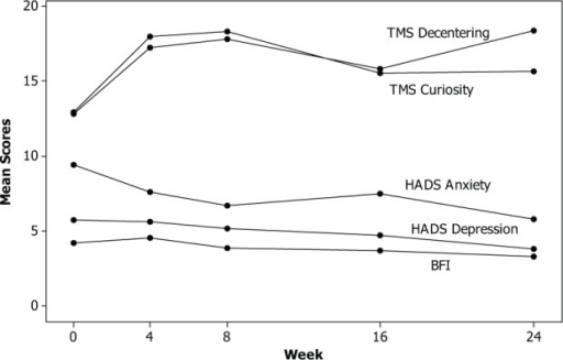 Mean scores for BFI, HADS Depression, HADS Anxiety, TMS Curiosity, and TMS Decentering over the 24 weeks of the study period.