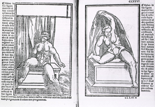<p>Two views: full length female figure seated on a pedestal; abdomen exposed to reveal uterus; on rigth, l. ccxxvi recto, figure is frozen in act of throwing off a sheet.</p>
