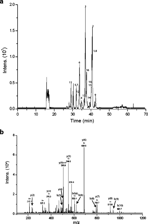 On-line digestion of 10 pmol cytochrome C at a flow rate of 1 μL min−1: (a) base peak chromatogram, the numbers correspond to the matched peptides in Table 3, and (b) MS–MS fragmentation of the peptide TGPNLHGLFGR with m/z 584.9 showing several of the matched fragment ions