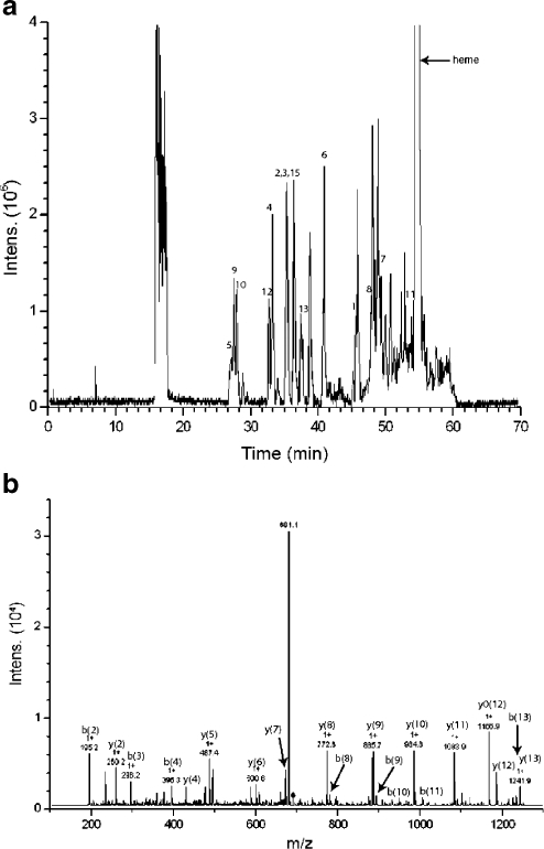 Results from on-line digestion of 10 pmol myoglobin at a flow rate of 1 μL min−1: (a) base peak chromatogram, the numbers correspond with the matched peptides in Table 3, and (b) the MS–MS spectrum of the peptide HGTVVLTALGGILK with m/z 689.7