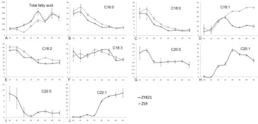 Fatty acid accumulation patterns in seed development. (A) The trend of total fatty acid accumulation in seed development. Fatty acids peaked at different times but the end accumulation was similar. (B-J) The accumulation pattern of fatty acids present in both cultivars. Most share similar accumulation patterns, but C18:1 was quite different between the two cultivars. Values in parentheses indicate the relative composition percentage and values in abscissa indicate the seed development stage. The black curves represent ZY821 and the gray curves represent ZS9. Each data point represents the mean ± SD of three replicates.