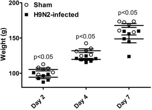 Effect of A/chicken/NJ/97 (H9N2) infection on weight gain in MHC-defined (B2/B2) chickens at 2, 4 and 7 days post infection. Two-week old birds received either PBS (Sham) or 107 EID50 H9N2 per bird via intranasal route. Bird weight was significantly reduced between the two groups on each day tested (p<0.05).