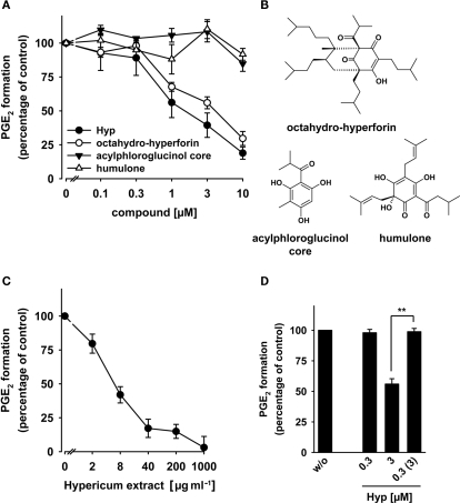 Effects of hyperforin on the activity of mPGES-1. (A) Concentration–response curves for Hyp, octahydro-hyperforin, the acylphloroglucinol core, and humulone. (B) Chemical structures of octahydro-hyperforin, the acylphloroglucinol core, and humulone. (C) Concentration–response curves for a St. John's wort extract. (A,C) For studies of mPGES-1 inhibition, microsomal preparations of IL-1β-stimulated A549 cells were pre-incubated with vehicle (DMSO) or the test compounds at the indicated concentrations for 15 min at 4°C, and the reaction was started with 20 μM PGH2. After 1 min at 4°C, the reaction was terminated using a stop solution containing FeCl2 and 11β-PGE2 (1 nmol) as internal standard. The 100% values in the individual experiments are in the range of 3–4 μg ml−1 PGE2. Data are given as mean ± SE, n = 3–4. (D) Reversibility of mPGES-1 inhibition by Hyp. Microsomal preparations of IL-1β-stimulated A549 cells were pre-incubated with 3 μM inhibitor for 15 min at 4°C. An aliquot was diluted 10-fold to obtain an inhibitor concentration of 0.3 μM. For comparison, microsomal preparations were pre-incubated for 15 min with 0.3 μM Hyp or with vehicle (DMSO), and then, 20 μM PGH2 was added (no dilution). Then, all samples were incubated for 1 min on ice, and PGE2 formation was analyzed as described by RP-HPLC. Data are given as mean ± SE, n = 3–4, **p < 0.01 vs. vehicle (0.1% DMSO) control, ANOVA + Tukey HSD post hoc tests.