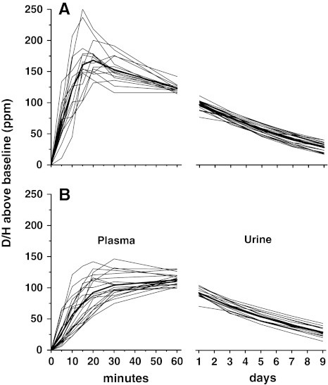Changes in plasma deuterium to protium ratio (D/H) following ingestion of labeled water and urine D/H over the nine following days in subjects from the first and second group (panela and b, n = 15 and 21, respectively. Individual values and mean)