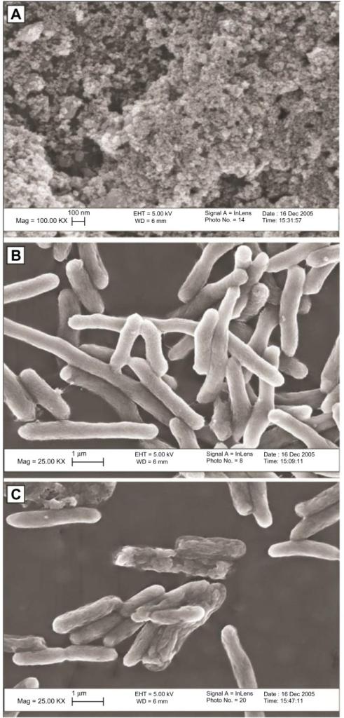 zinc oxide nanoparticles applications pdf