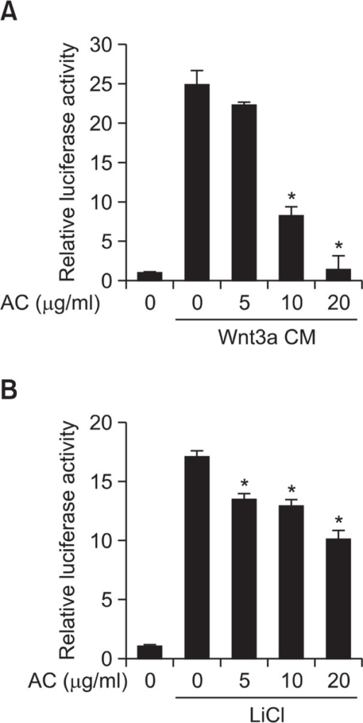 Atractylochromene inhibits TOPFlash activity. After treatment of Wnt3a CM (A) or LiCl (20 mM) (B), and atractylochromene (20 μg/ml) to the TOPFlash reporter stable HEK-293 cells for 15 h, TOPFlash reporter activity was determined by measuring firefly luciferase activity. Data shows the relative luciferase activity by mean ± S.D. of three experiments. The asterisks indicate a significant difference from the Wnt3a CM treated vehicle group (*p<0.01).