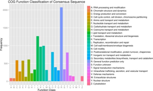 Clusters of orthologous groups (COG) classification.In total, 8,505 of the 41,052 sequences with Nr hits were grouped into 25 COG classifications.