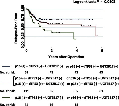 Kaplan-Meier curves of relapse-free rates in 234 patients with HNSCC. Differences in time until relapse were compared among combinations of p16 (+) tumors, disruptive TP53-mutations, and homozygous UGT2B17 deletions. The group of both UGT2B17-deletion and a disruptive TP53-mutation in the primary tumors is indicated as green-colored line, the group of both p16 (+) and no disruptive TP53-mutation in the primary tumors is indicated as blue-colored line and the other groups are indicated as red-colored line. p16 (+): p16-positive tumor; p16 (-): p16- negative tumor; dTP53 (+): presence of disruptive TP53-mutations; dTP53 (-): no disruptive TP53-mutations or wild-type TP53; UGT2B17 (+): UGT2B17-deletion: homozygous deletion of UGT2B17; UGT2B17 (-): UGT2B17-presence: one or two copies of UGT2B17.