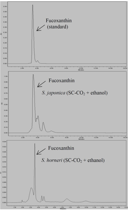 HPLC chromatogram of fucoxanthin content in S. japonica (SC-CO2 + ethanol) and S. horneri (SC-CO2 + ethanol) extracts.