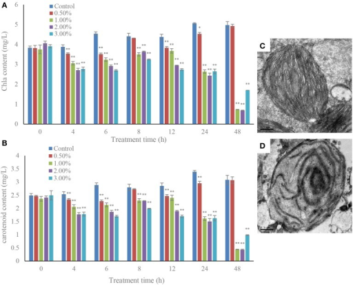 Inhibitory effects of the bacterial culture on chlorophyll a (A) and carotenoid (B) contents in A. tamarense, and the TEM morphology of a control (C) and damaged chloroplast (D). All error bars indicate SE of the three replicates. *Represents a statistically significant difference of p < 0.05 when compared to the control, **represents a statistically significant difference of p < 0.01. Bars (C,D) 0.5 μm.