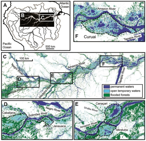 Location of study areas across the Amazonian River ecosystems in a large (A–C) and small scale (D–F). Dashed black lines delineate the Cabaliana, Janauaca, Miratuba, Canaçari, and Curuai floodplains (Abril et al., 2014).