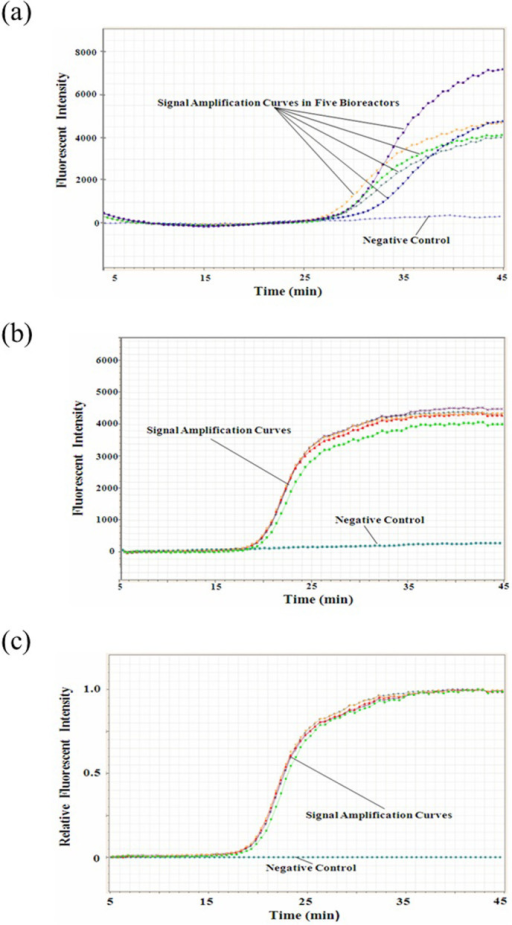 Comparison of DNA amplification in uncoated and non-stick-coated metal micro-nanoliter fluidic chips.(a) Isothermal DNA amplification in the uncoated metal micro-nanoliter fluidic chip, which displays obvious differences among the five parallel bioreactors. (b) Isothermal DNA amplification in the non-stick-coated metal micro-nanoliter fluidic chip, where the amplification in the five parallel bioreactors displays good consistency and the time difference at the second derivative inflexions of the exponential DNA amplification curves for the five bioreactors are within 0.5 min. (c) Normalization processing of the isothermal DNA amplification curves in (b).