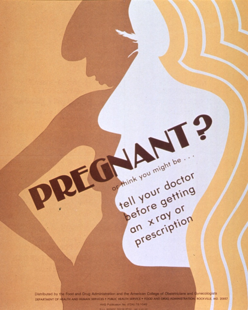 <p>Tan and gold poster with brown lettering.  Title and caption in center of poster.  Visual image is an abstract illustration of a woman's head superimposed on a silhouette of a woman's body.  Publication information at bottom of poster.</p>