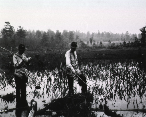 <p>Two servicemen in uniform and thigh-high rubber boots traverse a swamp.  One of the men dips a small pail into the water, while the other holds his pail and examines the contents.</p>