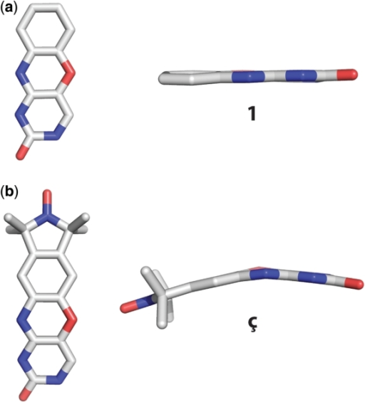 Small molecule crystal structures of (a) phenoxazine (1) and (b) the nitroxide spin-labeled nucleobase ç.