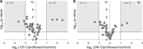 Identification of significant protein abundance changes between control and antibiotic-treated samples. Logarithmic protein changes (log2) of the 12 h of ciprofloxacin treatment (A) and 24 h of ciprofloxacin treatment (B) relative to the control condition were correlated to their respective logarithmic (log10) p values, calculated by a t test analysis. Threshold settings of protein changes >2-fold and p values < 0.01 (black lines) were applied to identify significantly regulated proteins.