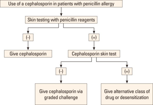 Use of a cephalosporin in patients with penicillin allergy.