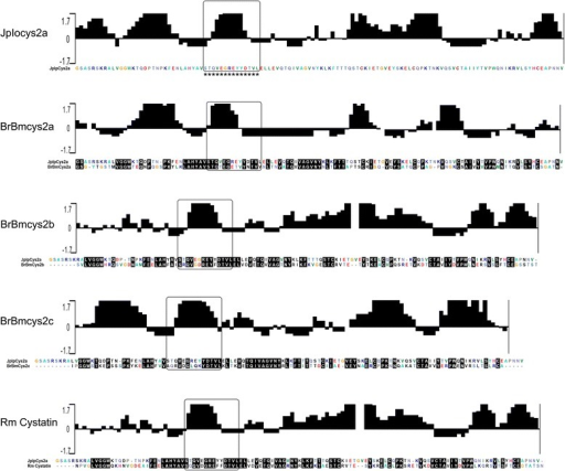 Conserved and antigenic tick cystatin regions for JpIocys2a peptide selection. Antigenic index plots for tick cystatins were predicted using the Jameson–Wolf algorithm. Graphic increased positivity shows predictive antigenic sites. Alignment shows conserved regions between JpIocys2a and R. microplus cystatins. Black boxes indicate conserved and antigenic amino acid region for each sequence. Asterisk indicate the selected region for peptide synthesis.