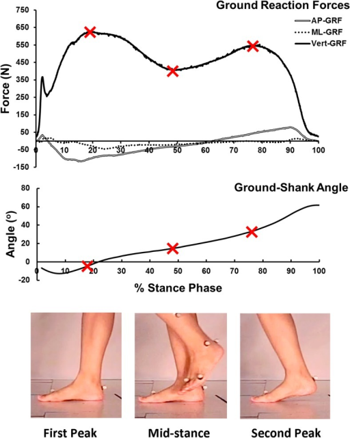 Ground reaction forces and ground-shank angle recorded in the gait analysis and the three instants, first-peak, mid-stance, and second-peak, for simulation.The three instants were marked in the curves.
