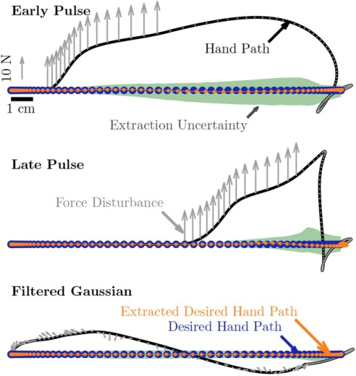 Simulated data illustrating tautology of extraction across pulse and filtered Gaussian noise disturbance types.Intent is modeled as a minimum jerk, 5th order polynomial. Forces experienced are combined with intent via Burdet et al.'s [6] model to produce the simulated arm trajectory. Extraction to recover intention from arm and force trajectory follows. Parameter errors are introduced into the extraction and varied according to Table 1 to estimate sensitivity. Examining the distribution of deviation in trajectories from this analysis reveals that sensitivity is not uniformly distributed throughout a reach.