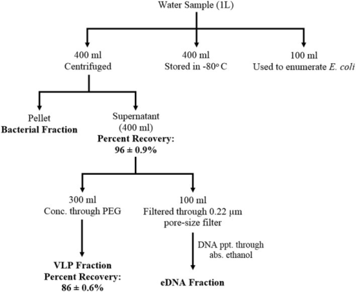 Schematic diagram showing water sample fractionation st | Open-i