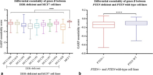 Differential essentiality of genes Ba between nine DDR-deficient and MCF7 cell lines; and b between PTEN−/− and PTEN wild-type isogenic cell lines. We considered MCF7, which does not have any known DDR defect, as our control. Comparisons of GARP-score means for genes B between DDR-deficient lines and MCF7 showed significant differences (ANOVA p < 0.0001) between these cell lines. Similarly, comparison of GARP scores between two isogenic HCT116-derived cell lines, one with PTEN−/− and the other with wild type PTEN showed significant difference (paired t-test: p < 0.0001) between the two cell lines. This analysis indicated that the essentiality/lethality of genes B is specific to DDR-deficient/PTEN-deficient cell lines, and therefore context-dependent on DDR deficiency