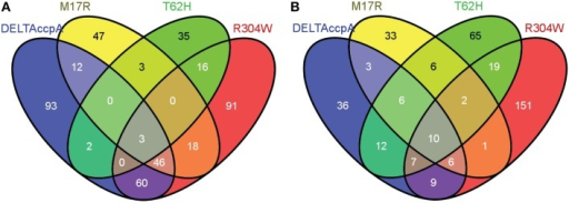 Venn diagram showing the genes that were differentially regulated in each one of the CcpA mutant strains. Numbers represent the genes that were differentially regulated in each CcpA mutant strain. Only genes with a fold change larger than 1.7 or smaller than -1.7 were used in the analysis. (A) Overview of the differentially regulated genes when the strains with the CcpA mutant were grown on LB + 1% glucose (see also Supplementary File, Sheet 2). (B) Overview of the differentially regulated genes when the strains with the CcpA mutant were grown on LB (see also Supplementary File, Sheet 5). Venn diagrams were made via http://bioinfogp.cnb.csic.es/tools/venny/. More detailed information on up- or down-regulated genes is shown in Table 4.