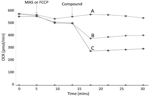 Representative complex V assay trace. Complex V assays consisted of cells in a solution containing substrates for complex IV before a series of compound injections into the cell culture microplate. FCCP (OXPHOS uncoupler) (Trace A) or MAS buffer (Traces B and C) was first injected, followed by 2 cycles of measurements. Flutamide, 2-hydroxyflutamide, oligomycin (positive control), or vehicle control was then injected into both the uncoupled (FCCP-treated) and coupled (MAS-treated) cells. Change in complex V activity was defined as the reduction in OCR of coupled cells upon flutamide/2-hydroxyflutamide injection minus the change in OCR of uncoupled cells, as a % of vehicle control. Injections for traces shown; A, FCCP, 250 μM 2-hydroxyflutamide; B, MAS, 250 μM 2-hydroxyflutamide; C, MAS, Oligomycin. Each measurement cycle was a total of 3 min.