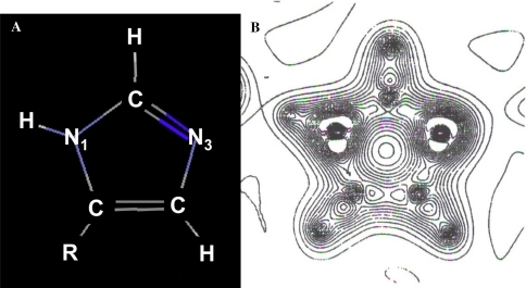 (A) The structure of the imidazole group of histidine and (B) its electronic charge density, determined by X-ray diffraction at 103 K for the projection in (A) (adapted from Epstein et al. 1982). In (A), R = remainder of the histidine molecule