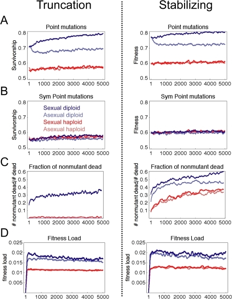 Diploid sexual populations evolve mutational robustness at lower                            mutation rate.Plots show results of 38 simulations to 5,000 generations with                            μ = 0.005, smoothed with a                            sliding window of 100 generations. (A) Robustness to point mutations                            shows diploid sexual populations evolve greater robustness, while                            diploid asexual populations have a transient decrease in robustness. (B)                            Symmetric double mutations were simulated the same as Figure 5D and                            eliminated most of the diploid robustness advantage. (C) Fraction of                            mutated individuals that were viable during evolutionary simulation. (D)                            Fitness load calculated according to Equation 16.