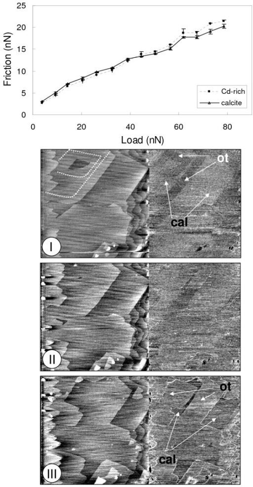 Friction versus load plot for experiment Cd-1 and related height/fricion images. a) The friction vs. load plot shows that at low loads the calcite contact possess a slightly higher friction than that calculated for a single layer of calcian otavite, but at higher loads, the friction force is larger on the calcian otavite film. b) Height/friction image corresponding to a load of 14 nN. White lines on the height image represent the original calcite steps prior to the start of the calcian otavite film growth. c) Height/friction images corresponding to a load of 40 nN. d) Height/friction images corresponding to a load of 72 nN.