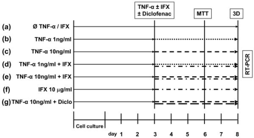 The experimental setup to study the effect of tumor necrosis factor-alpha (TNF-α) on human joint capsule myofibroblasts. Seven different groups (a-g) were chosen in the study. Group (a) as the control was cultured without any cytokine or inhibitor. The cytokine or the inhibitor or both were added after 3 days of culture. On day 6, the MTT assay was performed and the three-dimensional (3D) collagen gels were released from the culture plate. After 48 hours, gel surfaces were calculated as indicated in Materials and methods. Diclo, diclofenac; IFX, infliximab; MTT, 3-(4,5-dimethylthiazol-2-yl)-2,5-diphenyl tetrazolium bromide; RT-PCR, real-time polymerase chain reaction.