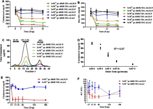 Evaluation of the minimum effective dose of AAV.TBG.mLDLR vector in Ldlr-/-Apobec1-/- Mice.Amounts of (A) Plasma cholesterol and (B) non-HDL cholesterol were evaluated in Ldlr-/-Apobec1-/- mice up to day 35 after treatment with different doses of AAV8.mLDLR (n = 9 animals per dose group). Each point represents mean ± s.d. *P<0.05, **P<0.01, ***P<0.001. (C) Pooled mouse plasma from AAV-injected Ldlr-/-Apobec1-/- (n = 5, per dose group) were analyzed by FPLC fractionation and the cholesterol content of each fraction was determined. (D) Dose response analysis of Day 60 samples examining cholesterol levels as a function of vector dose. (E) Plasma cholesterol and (F) Alanine transaminase were evaluated in Ldlr-/-Apobec1-/- mice up to day 180 days after treatment with 1×10∧11 GC of AAV8.TBG.mLDLR (n = 10) or 1×10∧11 GC of AAV8.TBG.nLacZ (n = 9). Each point represents mean ± s.d.