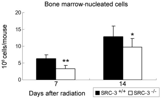 The cellularity of BM-nucleated cells in WT and SRC-3−/− mice on the 7th and 14th day after TBI shown as mean ± standard deviation (n =3). The nucleated cell numbers in SRC-3−/− mice were significantly lower than in WT mice on days 7 and 14. *P<0.05, **P<0.01. BM, bone marrow; WT, wild-type; SRC-3, steroid receptor coactivator-3; TBI, total body irradiation.