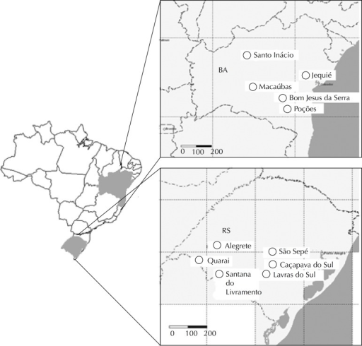 Cities in Bahia and Rio Grande do Sul where triatomines were collected,2002-2009.