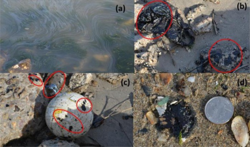 Field observation made at the Texas Dike road (Photographs taken on March 29th 2014, by Auburn University team): a) oil sheen observed in nearshore water; b) oil on a plastic sheet and rocks; c) oil on rocks and on a beached soccer ball and other objects; and d) beached oil blobs observed close to the waterline.