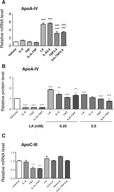 Effects of cytokines onapoA-IVandapoC-IIIgene expression. (A) Effects of LA and cytokines on apoA-IV gene expression. Differentiated Caco2 cells were pre-treated with or without r-h-TNF-α (20 ng/ml) or r-h-IL-6 (20 ng/ml) or the combination of these two cytokines for 72 h before changing into medium with or without 1 mM LA for 24 h. (B) Effects of LA and cytokines on apoA-IV protein secretion. Differentiated Caco2 cells were pre-treated with or without r-h-TNF-α (20 ng/ml) or r-h-IL-6 (20 ng/ml) or the combination of these two cytokines for 72 h before changing into medium with or without 0.25 or 0.5 mM LA for 24 h. The apoA-IV proteins in culture medium secreted from the cells were measured by ELISA. (C) Effects of LA and cytokines on apoC-III expression. The samples were processed at the same ways described at (A). The mRNA levels of both apoA-IV and apoC-III were measured by real time RT-PCR. * P < 0.05, ** P < 0.01, *** P < 0.001 vs. vehicle control; and ##P < 0.01 ###P < 0.001 vs. LA.