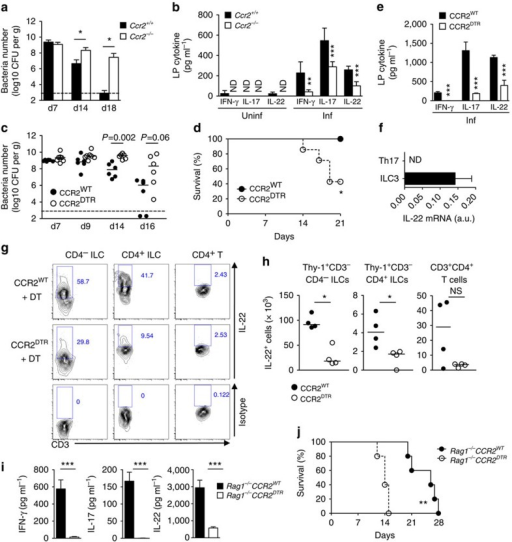 Recruitment of CCR2+ monocytes activate ILCs during intestinal infection.(a) C. rodentium burden in faeces from Ccr2+/+ and Ccr2−/− mice. Data represent mean±s.d. (n=5, representative of two independent experiments). (b) Colonic lamina propria mononuclear cells (LPMCs) were isolated from at 0 and 12 days post infection (dpi), and cultured for 24 h. Produced cytokines were measured by ELISA. Data represent mean±s.d. (n=5 from two individual experiments). ND, not detected. (c,d) CCR2WT and CCR2DTR mice were infected with C. rodentium and diphtheria toxin (DT; 10 ng g−1 body weight) was injected on 5, 7, 9, 11 dpi. Bacterial burden (c) and mouse mortality (d) are shown. Dots represent individual mice. Results are representative of two independent experiments. (e) Cytokines produced by LPMC at 8 dpi. Data represent mean±s.d. (n=3, representative of three independent experiments). (f) RORγtGFP/+ mice were infected with C. rodentium. LPMCs were isolated on 8 dpi and Th17 (CD3+CD4+RORγt+) and ILC3 (CD3−RORγt+) were purified by sorting. IL-22 mRNA expression was assessed by qPCR. Data represent mean±s.d. (n=3, representative of 2 independent experiments). (g,h) CCR2WT and CCR2DTR mice were infected with C. rodentium and DT was injected on days 5 and 7. LPMCs were isolated on 8 dpi, and cultured in the presence of heat-killed C. rodentium (MOI=10) for 16 h. IL-22 production in CD4− ILCs (Lin-Thy-1+CD3-CD4−), CD4+ ILCs (Lin-Thy-1+CD3−CD4+) and CD4+ T cells (Thy-1+CD3+CD4+) was assessed by flow cytometry (g), and absolute number of IL-22-producing T cells and ILCs are shown in h. (i) Rag1−/−CCR2WT and Rag1−/−CCR2DTR mice were infected with C. rodentium and DT was injected on days 5 and 7. LPMCs were isolated on 8 dpi and cultured for 24 h. Cytokines were measured by ELISA. Data represent mean±s.d. (n=4, representative of two independent experiments). (j) Mouse mortality of Rag1−/−CCR2WT and Rag1−/−CCR2DTR mice (n=5) infected with C. rodentium. DT was injected on day 5, 7, 9 and 11 post infection. NS, not significant, *P<0.05, **P<0.01, ***P<0.001 by Mann–Whitney U-test (a–c), Student's t-test (e,h,i) and Log-rank test (d,j).