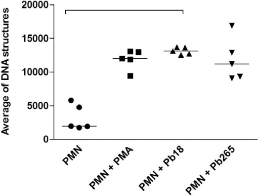 Average of total extracellular DNA structures released by PMN cultures activated with PMA (100 ng/mL) for 30 minutes or challenged with Pb18 or Pb265 (50:1 ratio) for two hours (p = 0.0016).