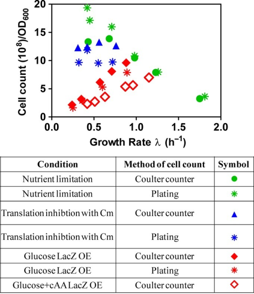 Cell counts from Coulter counter and platingCell counts for the three types of growth limitations were obtained by using a Coulter counter on the one hand and plating on the other hand. In general, there is a very good agreement between the results of the Coulter counter and plating counts. For LacZ overexpression (OE) in glucose minimal medium, plating (red asterisks) resulted in only slightly lower values (10%) than the Coulter counter method (filled red diamonds), demonstrating that almost all cells in the culture are viable even at large cell sizes. For the nutrient limitation series, the results of the two methods give good agreement except for the very slow growth conditions (GR < 0.7 h−1), where the Coulter counter method (green filled circles) resulted in a lower cell number as compared to plating (green asterisks). This results from the small cell sizes under these conditions, which are close to the detection limit of the Coulter counter. For translation inhibition with Cm, the values of plating (blue asterisks) are lower compared to those obtained from the Coulter counter method (filled blue triangles) by 20%. This indicates that a fraction of cells in these conditions is not viable when subjected to plating. Throughout this manuscript, we use the cell count in order to determine per cell quantities. In these calculations, due to the small deviations discussed above, for the actual cell count, we employ the values of plating for nutrient limitation at slow growth rates, but use the values of the Coulter counter methods for both translation inhibition and LacZ overexpression.