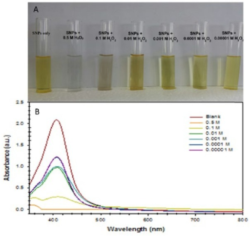 (A) Photograph of a test tube containing Acacia gum–stabilised silver nanoparticles (SNPs) with different concentrations of H2O2 solution (0.5-0.00001 M) showing the change in the solution colour of Acacia gum–stabilised SNPs after 60 minutes of reaction time at room temperature. (B) Localised surface plasmon resonance optical characteristics change with time due to the aggregation of SNPs induced by H2O2 solution.