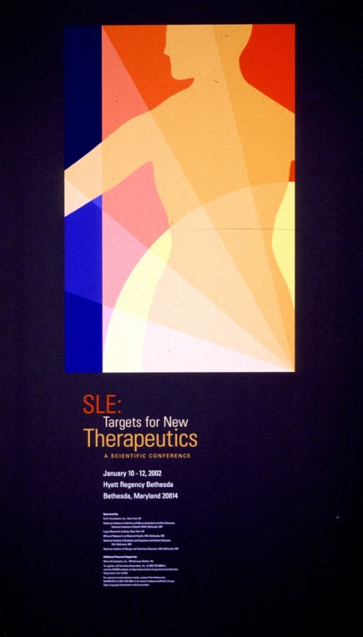 <p>Predominantly gray poster with multicolor lettering announcing conference, January 2002.  Visual image in upper portion of poster is a partial silhouette of a female figure against multicolor background.  Title and conference dates and location below image.  Sponsor information in lower portion of poster.</p>