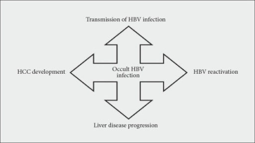 Schematic representation of the possible clinical implications related to occult HBV infectionHCC, hepatocellular carcinoma; HBV, hepatitis B virus