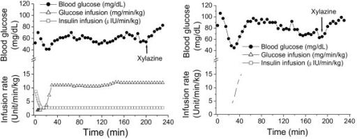Effects of xylazine on blood glucose concentrations in two fasted normoglycemic rhesus monkeys during the hyperinsulinemic-euglycemic clamp. Insulin was given with an initial bolus infusion to reduce blood glucose close to a targeted level followed by a constant infusion rate of 40 mU/m2 Surface Area*min (open squares) for maintaining hyperinsulinemia. Glucose was infused simultaneously with adjustable rates to clamp blood glucose in the euglycemic range of 55 – 75 mg/dL (open triangles). Xylazine (2 mg/kg) was injected intramuscularly after 40-min euglycemia stabilization to observe its effects on blood glucose when glucose was infused at a constant rate.