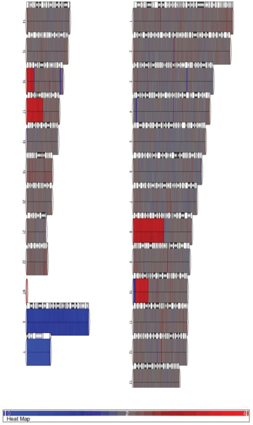 SNP 6.0 array of HCT116 cells to visualize copy number variation.Numbers (and X/Y) correspond to chromosomes, and MT represents mitochondrial DNA. Results were compared to a dataset from Affymetrix containing 270 mixed population samples from the International HapMap Project [29]. Regions in grey indicate no change in copy number, red indicates a copy number gain, and blue a copy number loss. This array was performed in duplicate.