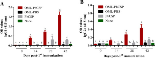 Humoral responses in mice to immunization with OML-PbCSP. ELISA detection of antigen-specific IgG1 (A) and IgG2a (B) in mice immunized with recombinant PbCSP. The mean optical density (OD) was determined at a wavelength of 415 nm. Each bar represents the mean ± SD for used mice per group and results are representative of two independent experiments. Different superscript letters indicate statistically significant differences (P <0.05) among groups at each time-point as determined by a one-way analysis of variance followed by Tukey's multiple comparison test. Mice were either immunized by OML-PbCSP (OML-PbCSP), OML alone (OML-PBS), naked PbCSP (PbCSP) or not immunized (None). Different superscript letters indicate statistically significant differences (P <0.05) among groups as determined by a one-way analysis of variance followed by Tukey's multiple comparison test.