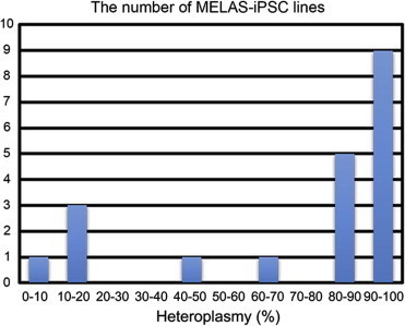 Histogram of the number of MELAS-iPSC lines with different heteroplasmy levels.