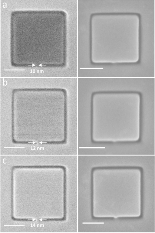 (Left panel) SHIM images of graphene-based pads that have been fabricated using direct-write He+ lithography.(Top left) Nonconducting graphene pad due to insufficient supply of electrons through the thin conducting graphene strip (~10 nm). (Middle left) Onset of slight conduction in graphene pad as the width of the conducting strip is increased to 12 nm. Thermal noise is also evident in the pad. (Bottom left) Fully conducting graphene pad with conducting strip width of 14 nm. (Right panel) SEM images of the exact same structures indicating insufficient electrons in the graphene pads (top and middle right) are compensated by the electron beam. Scale bar is 50 nm.