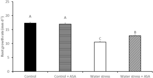 Root growth rate of tall fescue exposed to non-stress control, non-stress control with ascorbic acid (ASA) treatment, water stress, and water stress with ASA treatment. The data represent mean ± SE (n = 15 plants). Columns marked with the same letter are not significantly different at p < 0.05.