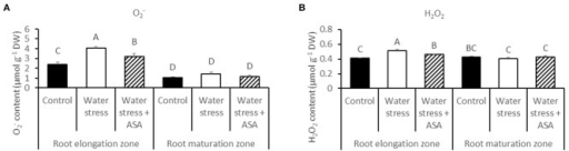 The content of super oxide (O) (A) and hydrogen peroxide (H2O2) (B) in roots of tall fescue exposed to non-stress control, water stress, and water stress with ASA treatment. The data represent mean ± SE (n = 4 replicated pots of plants and each pot with multiple plants). Columns marked with the same letter are not significantly different at p < 0.05.